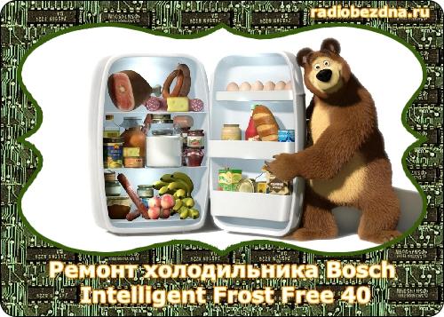 холодильник bosch intelligent frost free 40